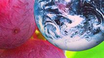 Un brindis por la Tierra